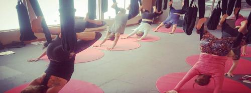 Aerial Yoga Series